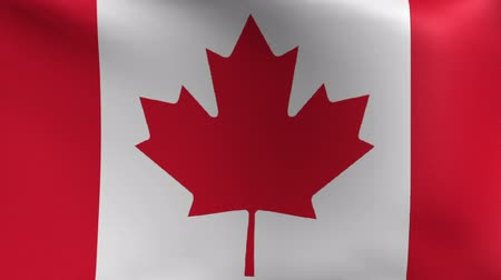 kanadai : Canada Flag Blowing in the Wind
