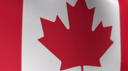 canadian maple leaf : Canada Flag 2 Stock Footage