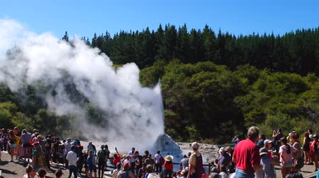 volcanology : 2019 February 13th, New Zealand, Coromandel - wai-o-tapu thermal wonderland, Scene during Lady Knox geyser active with tourist people in a sunny day.