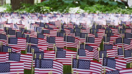 dag van de arbeid : American flags at Memorial day in the park