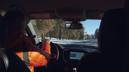 冬 : Driving a car through the national park in winter