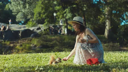 wiewiórka : Attractive girl feeds a squirrel on the lawn in the park Wideo