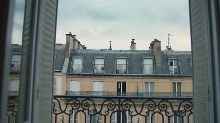 View from the roof of a French building in Paris