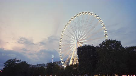 Ferris wheel in paris in the evening