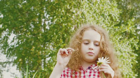 questionário : Little curly girl guesses on a white daisy.