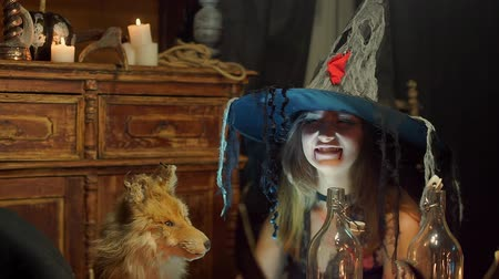 czary : A Halloween witch strokes a dead fox and smiles wickedly