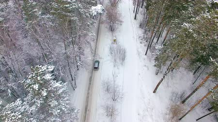 buggy car : Aerial view of the car moving in the winter forest. Drone flying behind the car Stock Footage