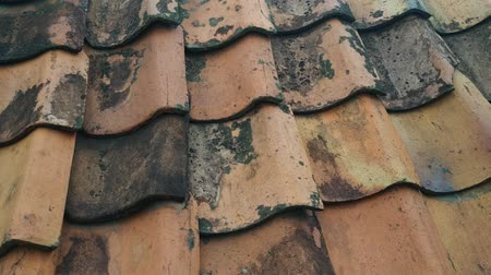 Traditional tile roof from clay, close up shoot