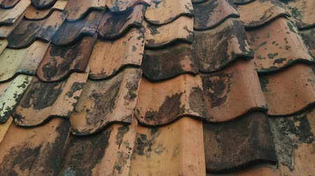 architectural protection : tile roof Stock Footage