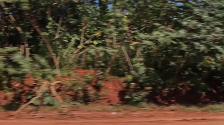 darkskinned : Village along the road. Slums of the car window. Poor nation. Stock Footage