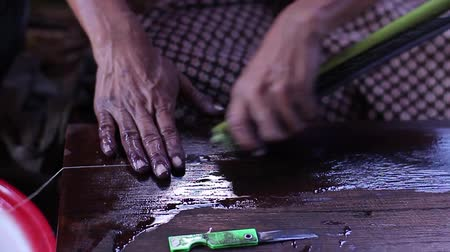 darkskinned : Making the thread of a lotus. Burmese woman made yarn. Weaving mill on Inle Lake. Silk from a lotus.