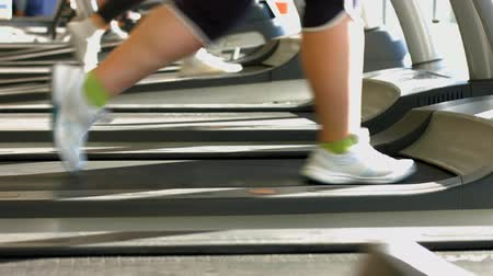gym : Treadmills in gym hall.