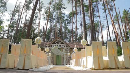cerimônia : Wedding ceremony in the forest.