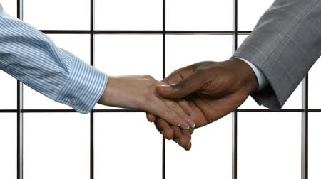 suécia : Woman shaking black mans hand. Businesscouples handshake on white background. Good manners are always appreciated. We build our own future.