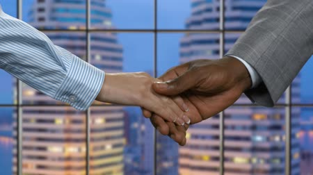 darkskinned : Businesswoman shakes black mans hand. Evening handshake in business center. Finding partners in the city. Companys president welcomes new ally. Stock Footage