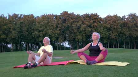 strong granny : Senior couple doing yoga. People sitting outdoors. Body and mind. In harmony with nature.