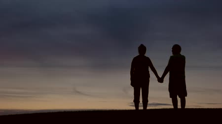 élek : Silhouette of couple holding hands. People on evening sky background. Share the eternity. I live for you. Stock mozgókép
