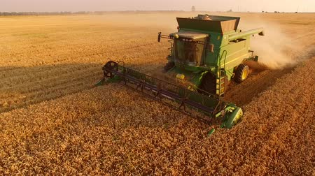 kombájn : Golden field and combine harvester. How to improve country economy.