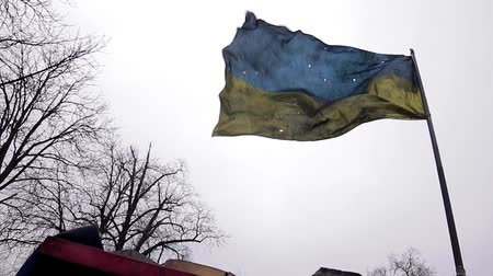 útočný : Riddled Ukrainian flag on the front lines. War in Ukraine. Checkpoint. The front line.