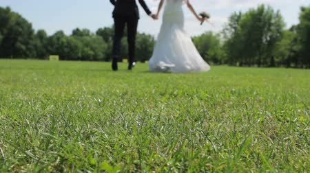 fidelity : Bride and groom enjoy each other. Newlyweds running holding hands. Wedding on the lawn. The figures of the bride and groom. Stock Footage