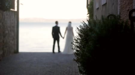 fidelity : Bride and groom go holding hands. Newlyweds are go on the waterfront. Stock Footage