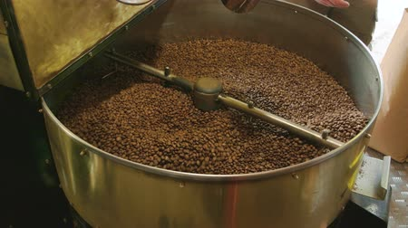 roaster : Coffee roasting machine, male hand. Lots of brown coffee beans.