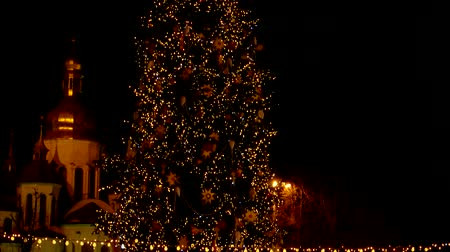 asma : Illumintaion of the christmas tree at night. Christmas lights. Magic atmosphere. Stok Video