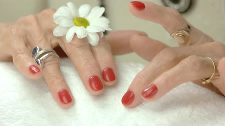 chrysanthemum : Female hands with flower after spa. Healthy and beautiful hands of old woman. Salon of beauty and spa. Stock Footage