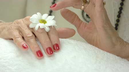 chryzantema : Manicured hands and gentle chrysanthemum. Old woman hands with red manicure on white towel in spa salon touching white little flower on her hand. Skin love and care.
