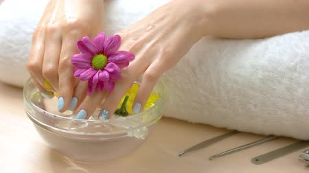 chryzantema : Young woman hands receiving spa therapy. Female hands in glass bowl with water and flowers. Spa healing for hands. Wideo