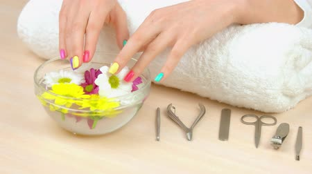 chryzantema : Spa treatment for female hands. Multicolored female finger nails in bath with water and flowers. Nails care and treatment.