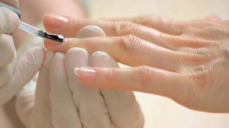 apply : Woman receiving manicure in beauty salon. Close up manicurist applying transparent varnish on client nails. Manicure in beauty salon. Stock Footage
