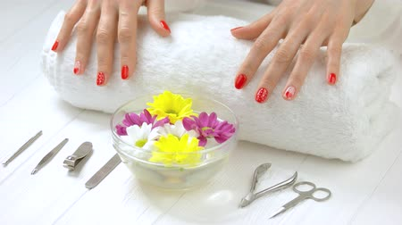 chrysanthemum : Manicured hands gently touching white towel. Young woman hands with fresh manicure on towel. Bath with water and chrysanthemums, manicure instruments in spa salon.