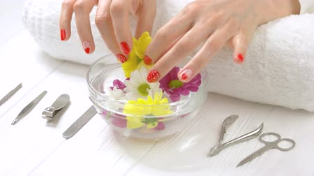 chrysanthemum : Manicured hands receiving spa procedure. Beautiful woman hands with gentle manicure receiving spa therapy in spa salon. Skin love and treatment.