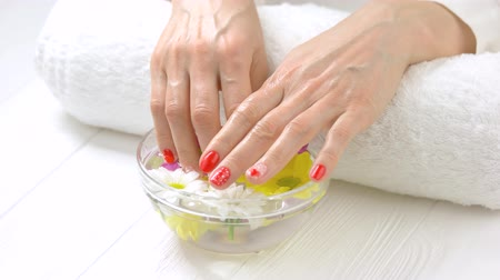 chryzantema : Hands in bowl with chrysanthemums. Female hands with fresh manicure soaking in aroma bath. Woman manicured hands receiving spa treatment. Wideo