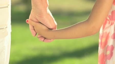 bondade : Child and grandfather holding hands. Little girl and senior man outdoors. Time spending together is priceless. Stock Footage