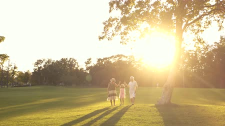 孫娘 : Grandparents with granddaughter walking on grass. Smiling senior people with grandchild in park, sunny day. People, nature and sun. 動画素材