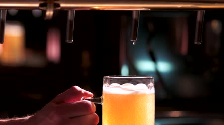 doldurmak : Pouring a glass of beer with little foam. Drops of beer dripping from metallic beer tap. Stok Video