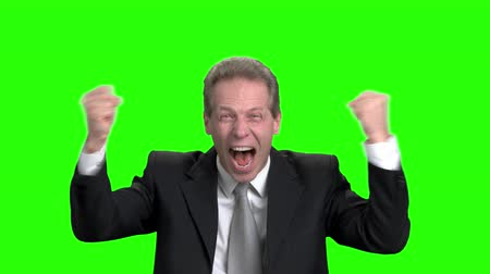 energized : Businessman emotionally celebrating success. Handsome mature man in suit celebrating success and raising hands up. Green screen hroma background.