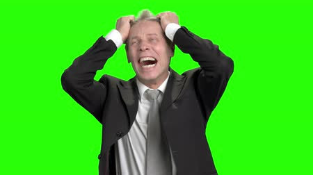 nervous breakdown : Extreme angry businessman pulling hair and screaming. Business man got nervous breakdown and pulling up tie, green hroma background.