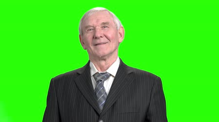 energized : Portrait of grandpa in suit. Happy and successful senior old man in striped suit, green background.