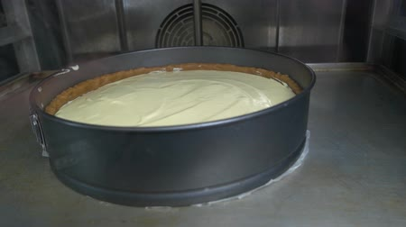grzejnik : Raw pie in oven, ready to bake, cooking process. Raw unbaked creamy pie in form and crust. Wideo