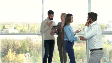 scraper : Lady in office consulting a client. Young man with beard asking a questions to a lady in office, huge windows background. Stock Footage