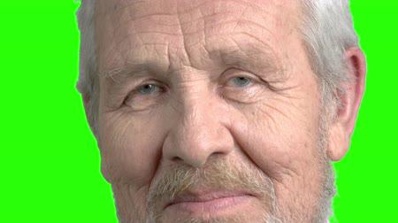 expectancy : Close up elderly man nods with head. Close up face of skeptical elderly man looking suspicious on chroma key background. Cautious attentively thinking old man close up.