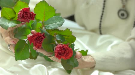 dokonalost : Roses in well-goomed hands, slow motion. Aged woman hands with elegant red manicure holding luxury bouquet of red roses close up. Beautiful gift to elderly woman.