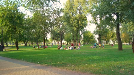 cobbles : 17.09.2017 - Kyiv, Ukraine. Many people get rest on grass field. Holidays on crowded city park.