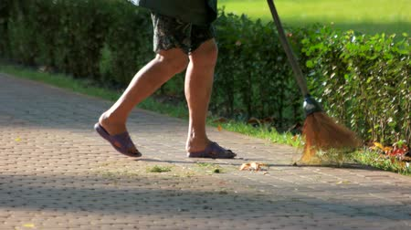 cobbles : Janitor sweeping leaves in the park. Broom cleans paving slabs. Stock Footage