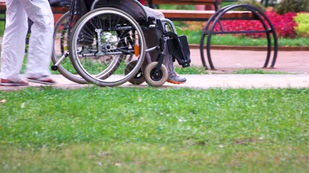pushed : Disabled person being pushed in a wheelchair by a family member. Walk in the park.