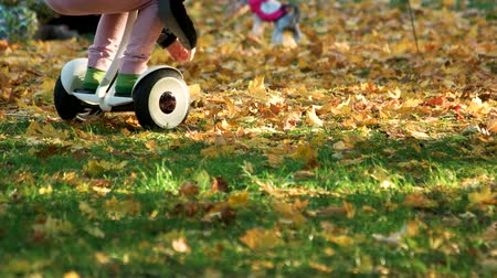 gyroscope : Little kid riding gyroscooter on the grass. Fallen oak leaves.