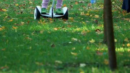 gyroscope : Riding gyroscooter outdoors on the grass. Child on electric board riding around.